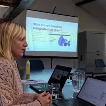 Presentation of mobile website